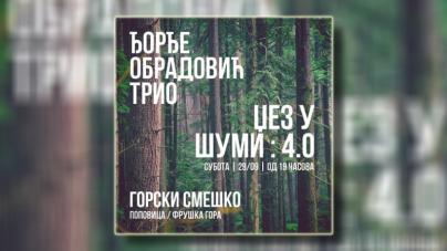 Džez u šumi – Đorđe Obradović Trio 29. novembra u Novom Sadu