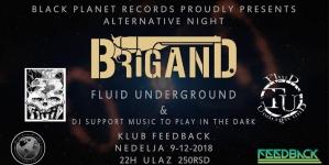 Brigand i Fluid 9. decembra u niškom Feedback-u