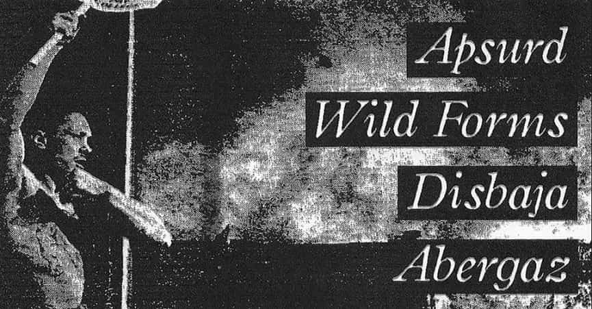 Punk Druženje II Abergaz, Disbaja, Apsurd, Wild Forms Attack