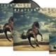 "Bruce Springsteen objavio dugoiščekivani album ""Western Stars"""