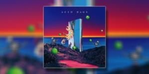 Acid Hags objavili novi album