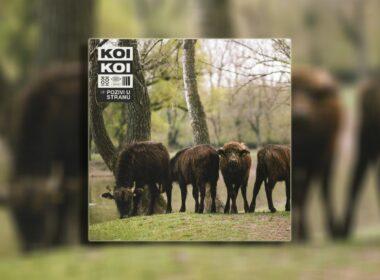 Pozivi u stranu album benda KOIKOI